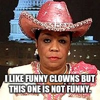 I LIKE FUNNY CLOWNS BUT THIS ONE IS NOT FUNNY. | image tagged in frederica wilson | made w/ Imgflip meme maker