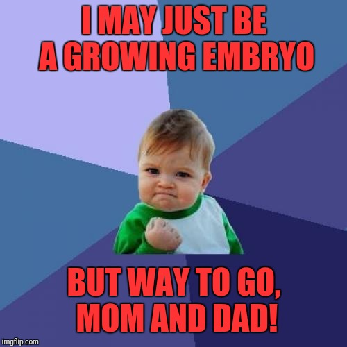 Success Kid Meme | I MAY JUST BE A GROWING EMBRYO BUT WAY TO GO, MOM AND DAD! | image tagged in memes,success kid | made w/ Imgflip meme maker