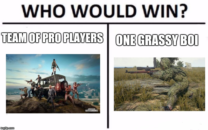 This happened to me once... | TEAM OF PRO PLAYERS ONE GRASSY BOI | image tagged in memes,who would win | made w/ Imgflip meme maker