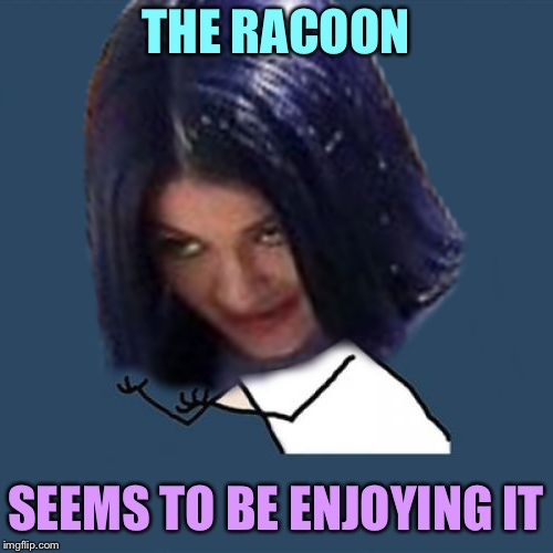 Kylie Y U No | THE RACOON SEEMS TO BE ENJOYING IT | image tagged in kylie y u no | made w/ Imgflip meme maker
