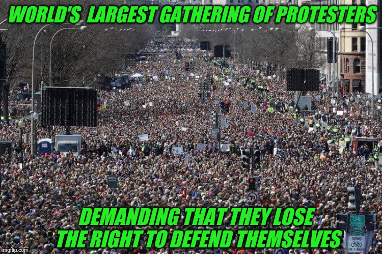 Gun Control goes full retard. | WORLD'S  LARGEST GATHERING OF PROTESTERS DEMANDING THAT THEY LOSE THE RIGHT TO DEFEND THEMSELVES | image tagged in gun control,protesters,full retard | made w/ Imgflip meme maker