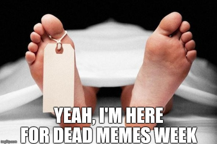 Dead Memes Week, am I doing it right?... Dead Memes Week, a thecoffeemaster and SilicaSandwhich extravaganza (March 23-29) | YEAH, I'M HERE FOR DEAD MEMES WEEK | image tagged in jbmemegeek,dead memes week,dead memes,memes | made w/ Imgflip meme maker