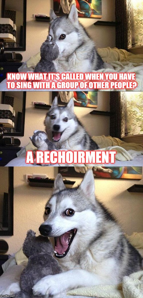 Bad Pun Dog Meme | KNOW WHAT IT'S CALLED WHEN YOU HAVE TO SING WITH A GROUP OF OTHER PEOPLE? A RECHOIRMENT | image tagged in memes,bad pun dog | made w/ Imgflip meme maker