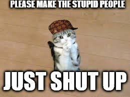 begging cat | PLEASE MAKE THE STUPID PEOPLE JUST SHUT UP | image tagged in begging cat,scumbag | made w/ Imgflip meme maker