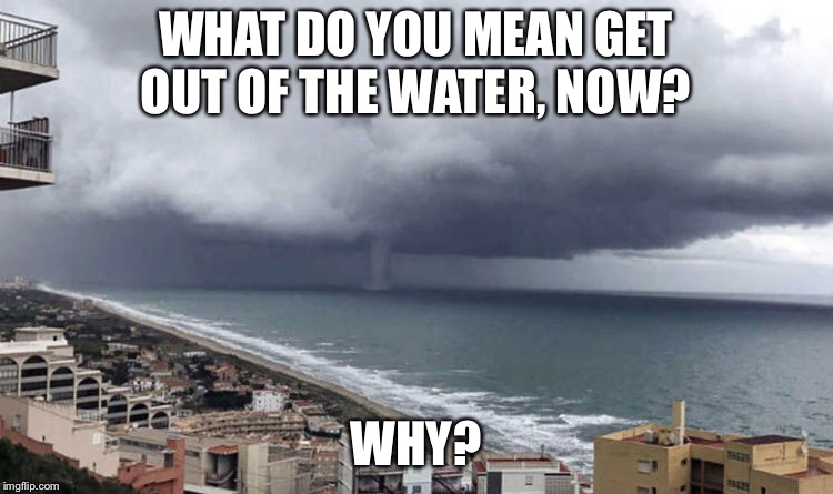 Get out of the water.  | WHAT DO YOU MEAN GET OUT OF THE WATER, NOW? WHY? | image tagged in swimming,ocean,waves | made w/ Imgflip meme maker