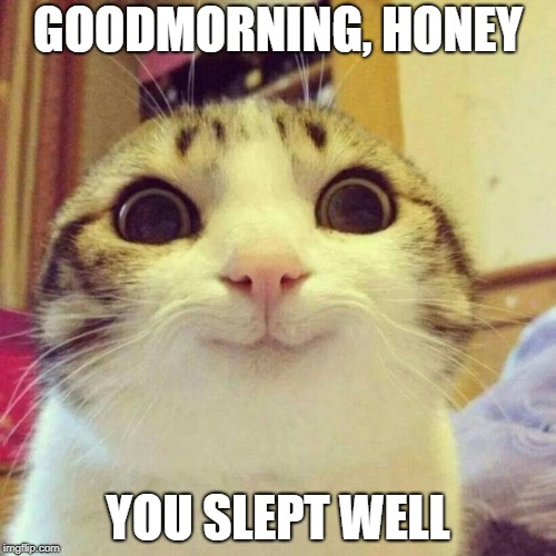 Smiling Cat | GOODMORNING, HONEY YOU SLEPT WELL | image tagged in memes,smiling cat | made w/ Imgflip meme maker