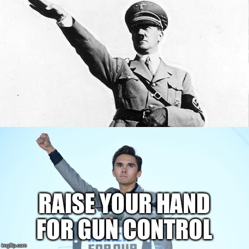 Hitler Hogg  |  RAISE YOUR HAND FOR GUN CONTROL | image tagged in david hogg,hitler,gun control,nazi,liberal,communist | made w/ Imgflip meme maker