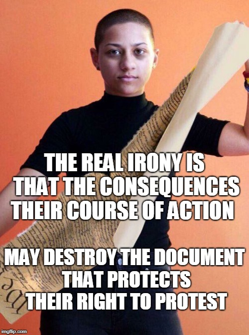 A lot of symbolism in this Ps image | THE REAL IRONY IS THAT THE CONSEQUENCES THEIR COURSE OF ACTION MAY DESTROY THE DOCUMENT THAT PROTECTS THEIR RIGHT TO PROTEST | image tagged in emma gonalez,gun control,protest,constitution,photoshop,memes | made w/ Imgflip meme maker