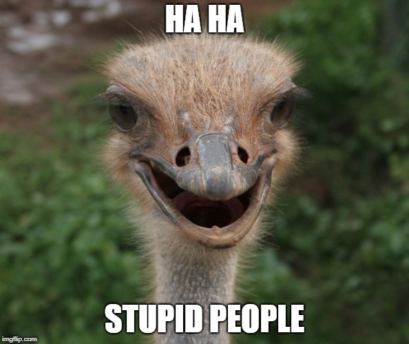HA HA STUPID PEOPLE | made w/ Imgflip meme maker