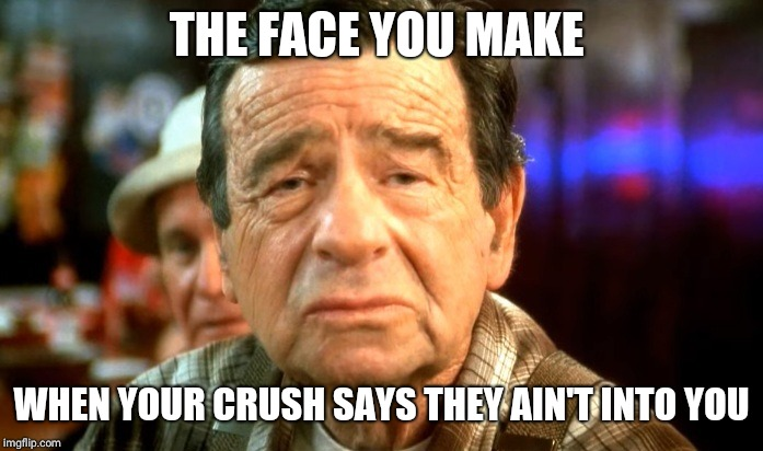 THE FACE YOU MAKE WHEN YOUR CRUSH SAYS THEY AIN'T INTO YOU | image tagged in walter matthau eyebrows | made w/ Imgflip meme maker