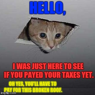 Hello, did you pay your taxes yet? | HELLO, I WAS JUST HERE TO SEE IF YOU PAYED YOUR TAXES YET. OH YES, YOU'LL HAVE TO PAY FOR THIS BROKEN ROOF. | image tagged in memes,ceiling cat,funny cats,taxes | made w/ Imgflip meme maker