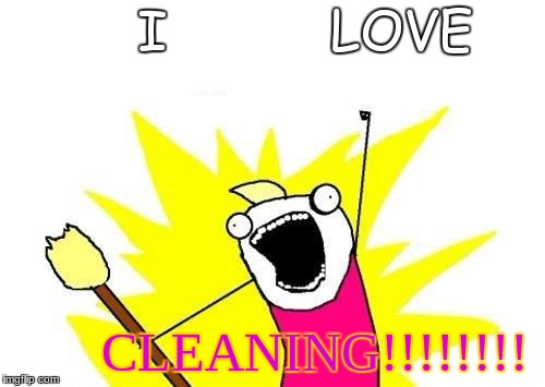 Cleaning is best | I          LOVE CLEANING!!!!!!!! | image tagged in memes,x all the y,cleaning,over enthusiastic | made w/ Imgflip meme maker