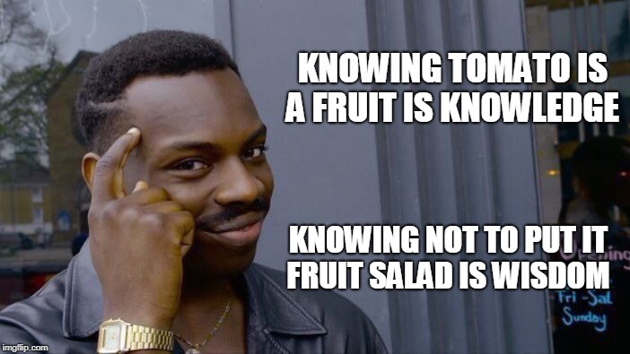 Roll Safe Think About It Meme | KNOWING TOMATO IS A FRUIT IS KNOWLEDGE KNOWING NOT TO PUT IT FRUIT SALAD IS WISDOM | image tagged in memes,roll safe think about it | made w/ Imgflip meme maker
