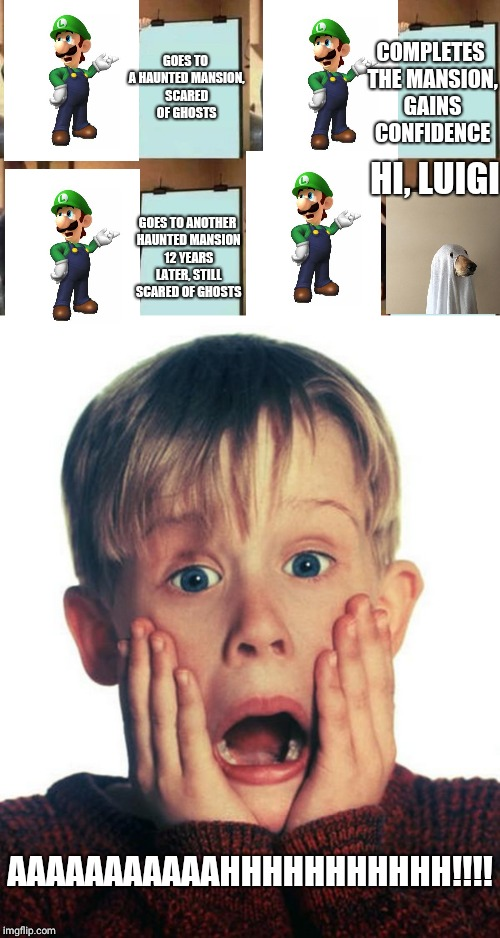 Luigi in a nutshell | GOES TO A HAUNTED MANSION, SCARED OF GHOSTS COMPLETES THE MANSION, GAINS CONFIDENCE GOES TO ANOTHER HAUNTED MANSION 12 YEARS LATER, STILL SC | image tagged in luigi,gru's plan,ghost,dog | made w/ Imgflip meme maker