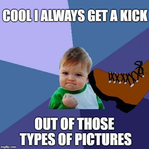 Success Kid Meme | COOL I ALWAYS GET A KICK OUT OF THOSE TYPES OF PICTURES | image tagged in memes,success kid | made w/ Imgflip meme maker