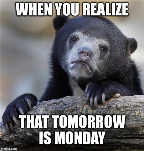 The realization of Sunday night  | WHEN YOU REALIZE THAT TOMORROW IS MONDAY | image tagged in memes,confession bear,monday,mondays,week | made w/ Imgflip meme maker