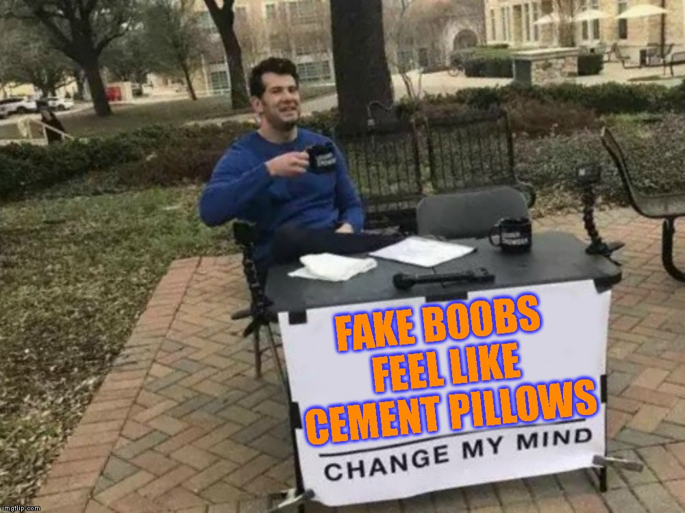 I Almost Broke My Neck On Those Once | FAKE BOOBS FEEL LIKE CEMENT PILLOWS | image tagged in boobs,boobies,change my mind,ouch,big boobs,disgusting | made w/ Imgflip meme maker