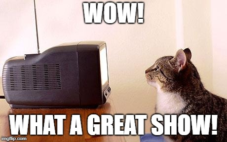 WOW! WHAT A GREAT SHOW! | image tagged in cat watching tv | made w/ Imgflip meme maker