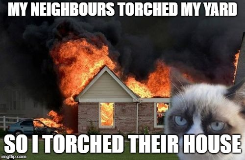 Burn Kitty | MY NEIGHBOURS TORCHED MY YARD SO I TORCHED THEIR HOUSE | image tagged in memes,burn kitty,grumpy cat | made w/ Imgflip meme maker