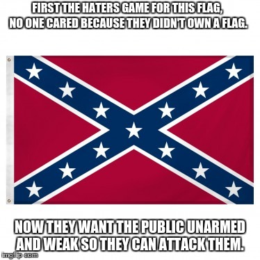 FIRST THE HATERS GAME FOR THIS FLAG, NO ONE CARED BECAUSE THEY DIDN'T OWN A FLAG. NOW THEY WANT THE PUBLIC UNARMED AND WEAK SO THEY CAN ATTA | image tagged in confederate flag meme | made w/ Imgflip meme maker