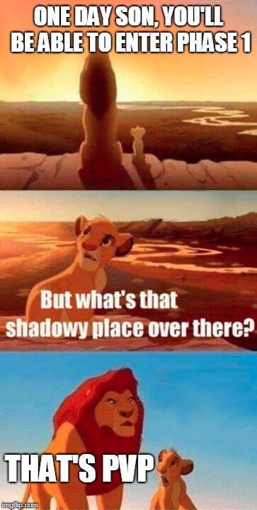 Simba Shadowy Place Meme |  ONE DAY SON, YOU'LL BE ABLE TO ENTER PHASE 1; THAT'S PVP | image tagged in memes,simba shadowy place | made w/ Imgflip meme maker