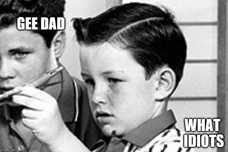 GEE DAD WHAT IDIOTS | made w/ Imgflip meme maker