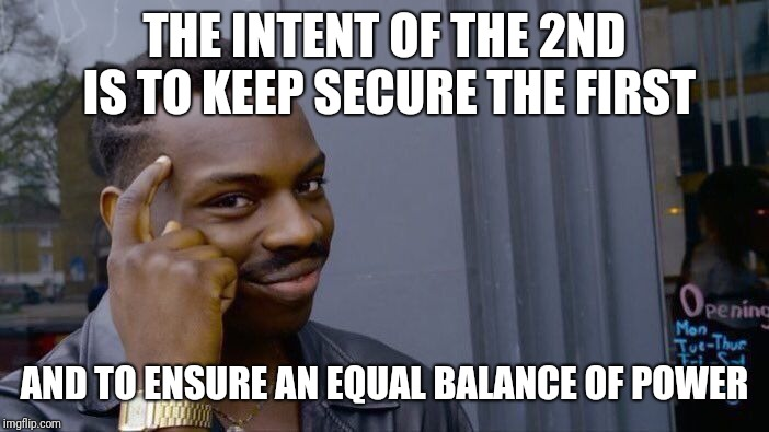 Roll Safe Think About It Meme | THE INTENT OF THE 2ND IS TO KEEP SECURE THE FIRST AND TO ENSURE AN EQUAL BALANCE OF POWER | image tagged in memes,roll safe think about it | made w/ Imgflip meme maker