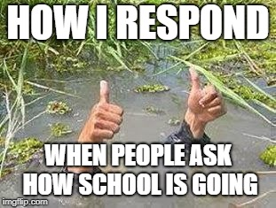 FLOODING THUMBS UP | HOW I RESPOND WHEN PEOPLE ASK HOW SCHOOL IS GOING | image tagged in flooding thumbs up | made w/ Imgflip meme maker