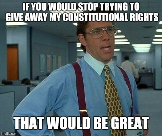 That Would Be Great Meme | IF YOU WOULD STOP TRYING TO GIVE AWAY MY CONSTITUTIONAL RIGHTS THAT WOULD BE GREAT | image tagged in memes,that would be great | made w/ Imgflip meme maker