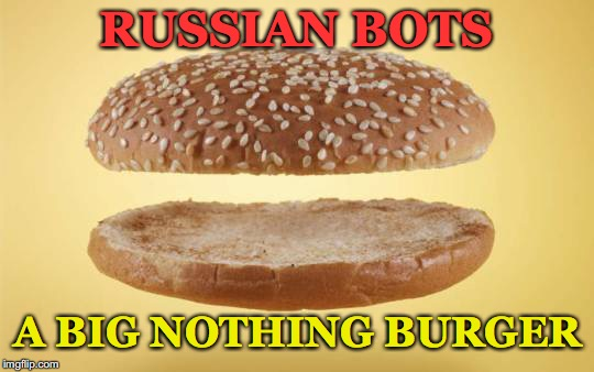 Hmmm...needs some condiments | RUSSIAN BOTS A BIG NOTHING BURGER | image tagged in the russians did it,nothing burger | made w/ Imgflip meme maker