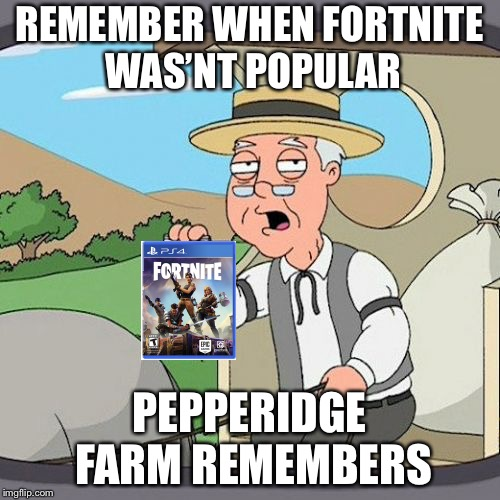 Pepperidge Farm Remembers Meme | REMEMBER WHEN FORTNITE WAS'NT POPULAR PEPPERIDGE FARM REMEMBERS | image tagged in memes,pepperidge farm remembers | made w/ Imgflip meme maker