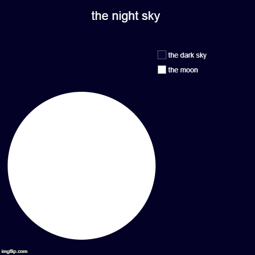 the night sky | the moon, the dark sky | image tagged in funny,pie charts | made w/ Imgflip pie chart maker