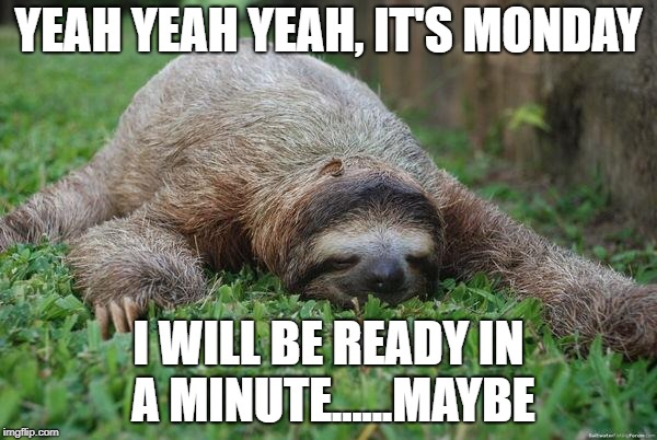 Sloth Monday | YEAH YEAH YEAH, IT'S MONDAY I WILL BE READY IN A MINUTE......MAYBE | image tagged in sloth monday | made w/ Imgflip meme maker