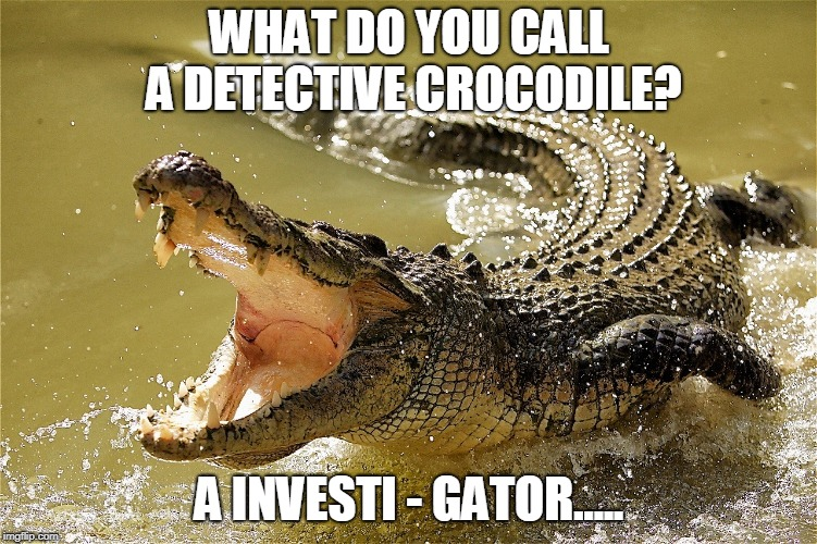 WHAT DO YOU CALL A DETECTIVE CROCODILE? A INVESTI - GATOR..... | image tagged in crocodile singing | made w/ Imgflip meme maker