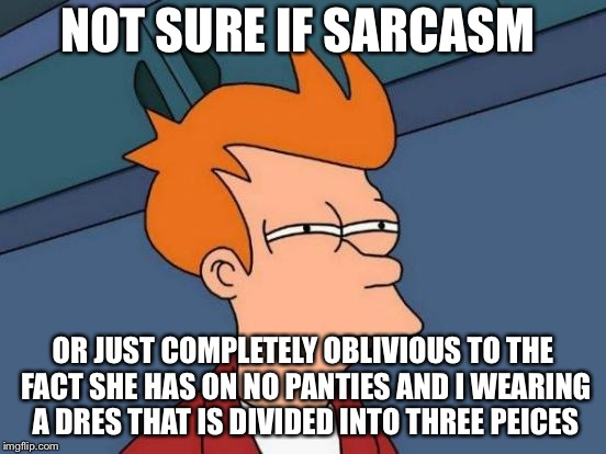 NOT SURE IF SARCASM OR JUST COMPLETELY OBLIVIOUS TO THE FACT SHE HAS ON NO PANTIES AND I WEARING A DRES THAT IS DIVIDED INTO THREE PEICES | image tagged in memes,futurama fry | made w/ Imgflip meme maker