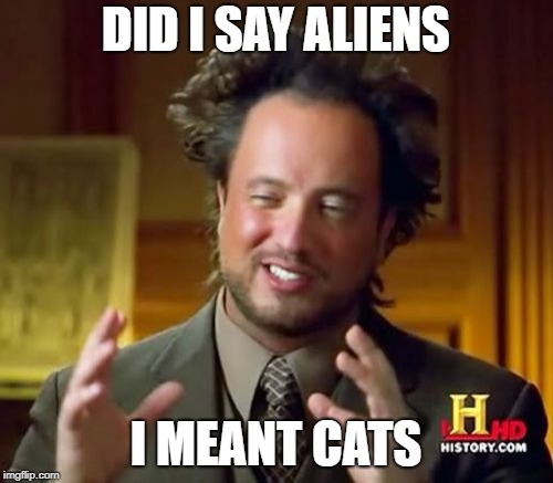 Ancient Aliens Meme | DID I SAY ALIENS I MEANT CATS | image tagged in memes,ancient aliens | made w/ Imgflip meme maker