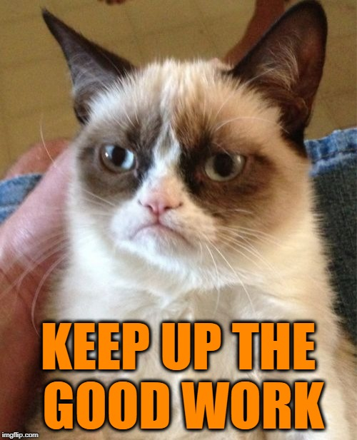 Grumpy Cat Meme | KEEP UP THE GOOD WORK | image tagged in memes,grumpy cat | made w/ Imgflip meme maker