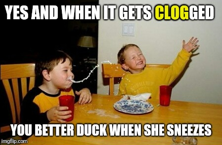 YES AND WHEN IT GETS CLOGGED YOU BETTER DUCK WHEN SHE SNEEZES CLOG | made w/ Imgflip meme maker