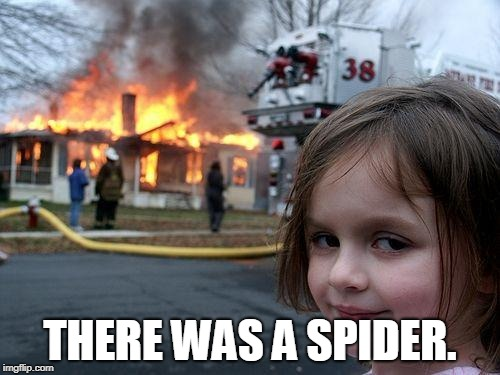 Disaster Girl Meme | THERE WAS A SPIDER. | image tagged in memes,disaster girl | made w/ Imgflip meme maker
