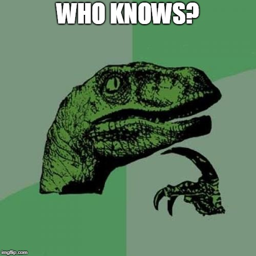 Philosoraptor Meme | WHO KNOWS? | image tagged in memes,philosoraptor | made w/ Imgflip meme maker