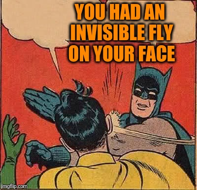 Batman Slapping Robin Meme | YOU HAD AN INVISIBLE FLY ON YOUR FACE | image tagged in memes,batman slapping robin | made w/ Imgflip meme maker