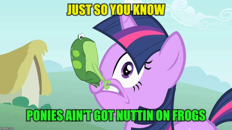JUST SO YOU KNOW PONIES AIN'T GOT NUTTIN ON FROGS | made w/ Imgflip meme maker