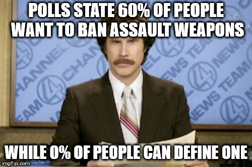 Ron Burgundy Meme | POLLS STATE 60% OF PEOPLE WANT TO BAN ASSAULT WEAPONS WHILE 0% OF PEOPLE CAN DEFINE ONE | image tagged in memes,ron burgundy | made w/ Imgflip meme maker