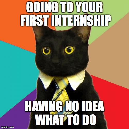 Business Cat Meme | GOING TO YOUR FIRST INTERNSHIP HAVING NO IDEA WHAT TO DO | image tagged in memes,business cat | made w/ Imgflip meme maker