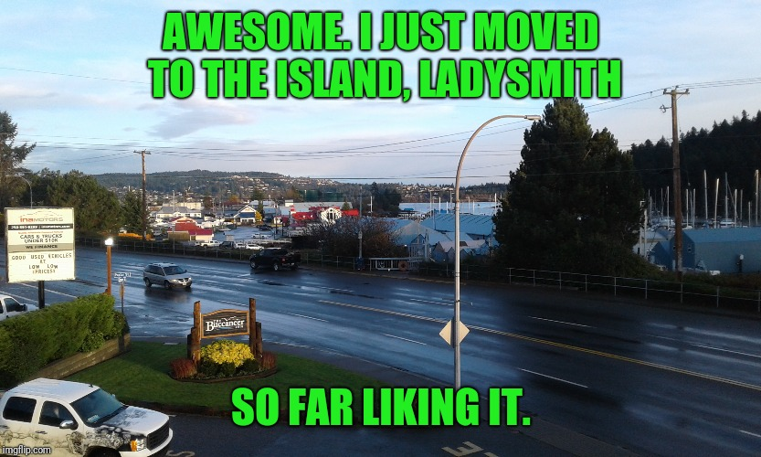 AWESOME. I JUST MOVED TO THE ISLAND, LADYSMITH SO FAR LIKING IT. | made w/ Imgflip meme maker