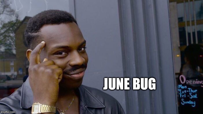 Roll Safe Think About It Meme | JUNE BUG | image tagged in memes,roll safe think about it | made w/ Imgflip meme maker