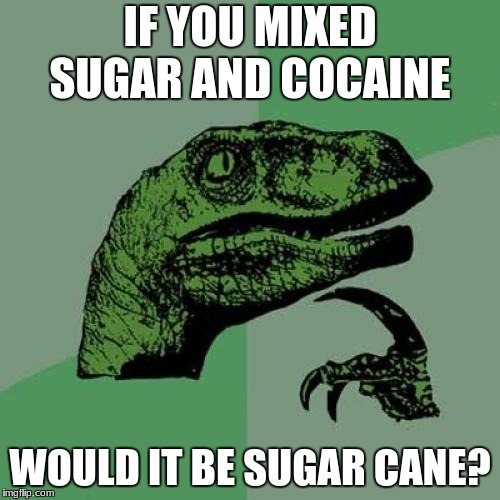 Philosoraptor Meme | IF YOU MIXED SUGAR AND COCAINE WOULD IT BE SUGAR CANE? | image tagged in memes,philosoraptor | made w/ Imgflip meme maker