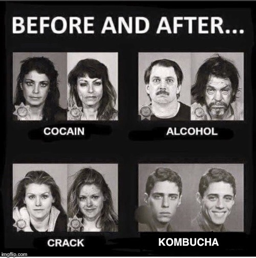 Before and after kombucha | KOMBUCHA | image tagged in before and after,sweet,tea,kush,vegan | made w/ Imgflip meme maker