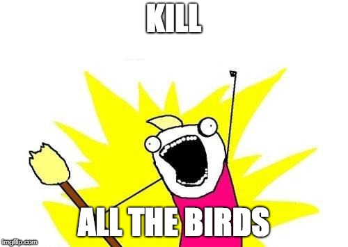 X All The Y Meme | KILL ALL THE BIRDS | image tagged in memes,x all the y | made w/ Imgflip meme maker