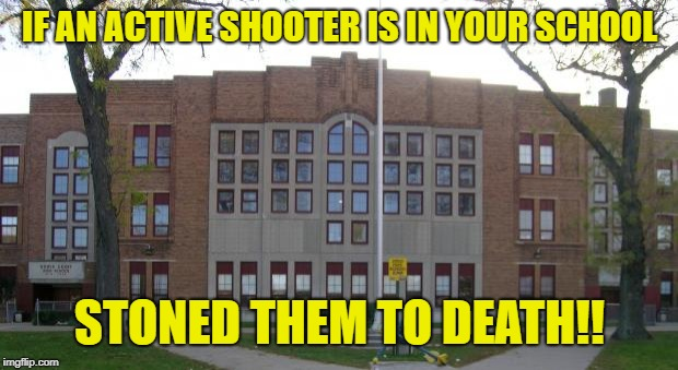 High School | IF AN ACTIVE SHOOTER IS IN YOUR SCHOOL STONED THEM TO DEATH!! | image tagged in high school | made w/ Imgflip meme maker